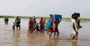 kosi flood